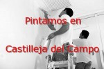 pintor_castilleja-del-campo.jpg